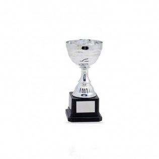 Trofeo PLATA