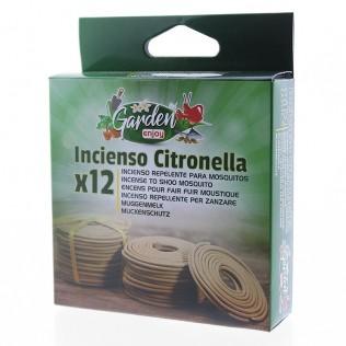 INCIENSO CINTRONELLA x12